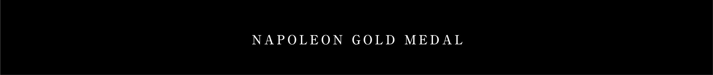NAPOLEON GOLD MEDAL